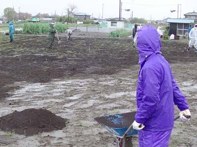 ここにきて、雨が小雨になり作業がしやすくなりましたが、なれない作業で内心フラフラです。