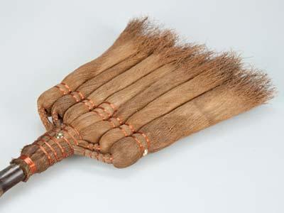 棕櫚箒 皮